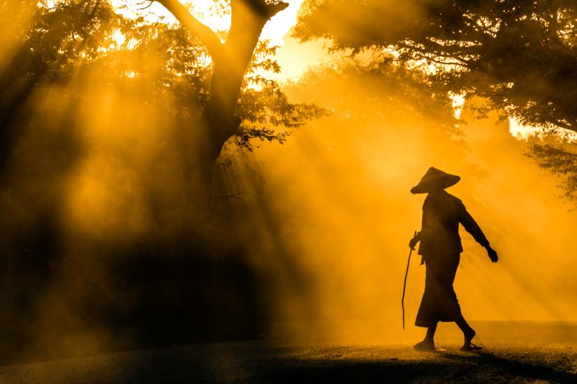 Shepherd in Bagan